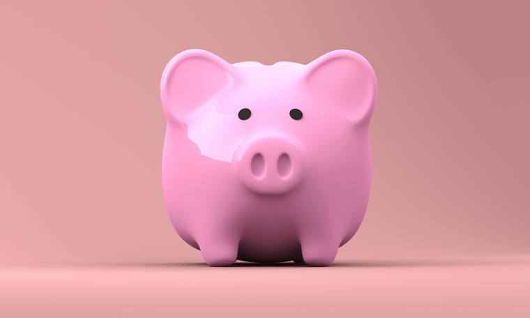 A pink piggy bank, on a coral background